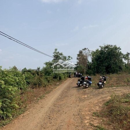 Đất Thành Phố Buôn Ma Thuột 135M²- Ảnh 4