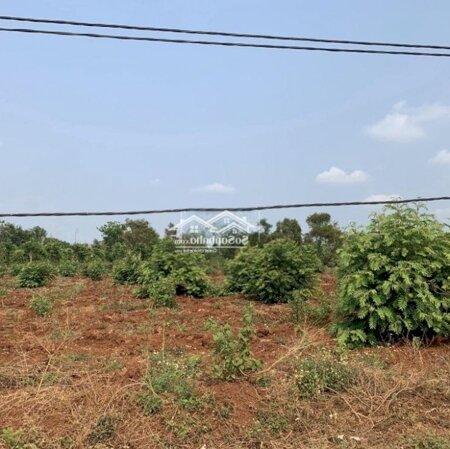 Đất Thành Phố Buôn Ma Thuột 135M²- Ảnh 6