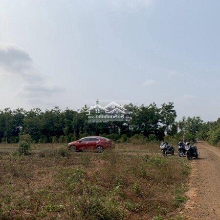 Đất Thành Phố Buôn Ma Thuột 135M²- Ảnh 3