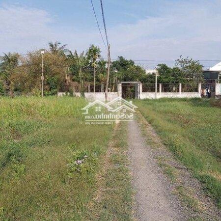 Đất Bình Chánh, Xã Phong Phú 80M2 Gần Chợ Phú Lạc- Ảnh 3