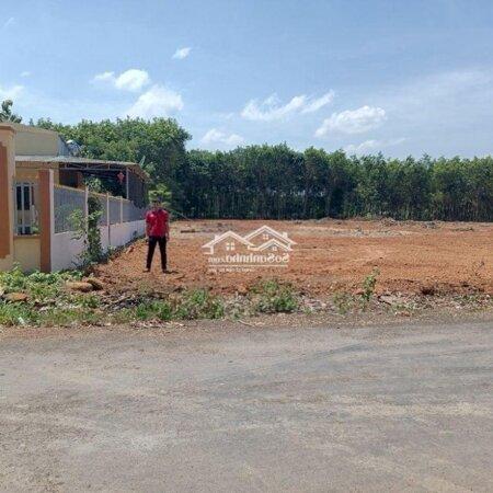 Mình Cần Bán Gấp Lô Đất Ở Xã Tân Hưng 600 Triệu/300M2- Ảnh 1
