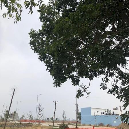 Cần tiền bán lô đất sổ đỏ cần tay tại khu đô thị hải quân tam giang- Ảnh 3