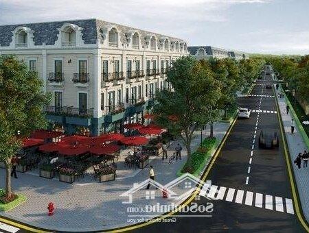 Shophouse Tnr Amaluna Trà Vinh 85M² 4Pn- Ảnh 3