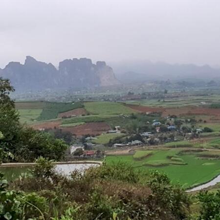 Bán đất Cao Phong 3,6ha view cao thoáng siêu đẹp- Ảnh 6