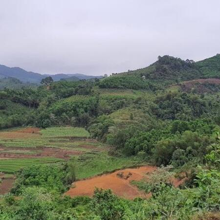 Bán đất Cao Phong 3,6ha view cao thoáng siêu đẹp- Ảnh 4
