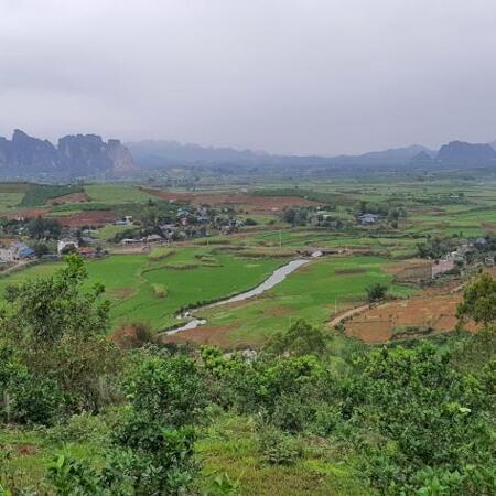 Bán đất Cao Phong 3,6ha view cao thoáng siêu đẹp- Ảnh 3