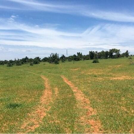 bán gấp 8 xào đất giá chỉ hơn 800 triệu, thời hạn 2064, đất vuông vức,bao đẹp.LH: 0919 626 750- Ảnh 2