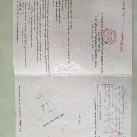 Bán Đất Đối Diện Ubnd Huyện Đồng Phú 116M2/980 Tr- Ảnh 2