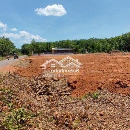 Đất 2Mt Dt753, Đồng Phú, Sổ Hồng Riêng- Ảnh 2