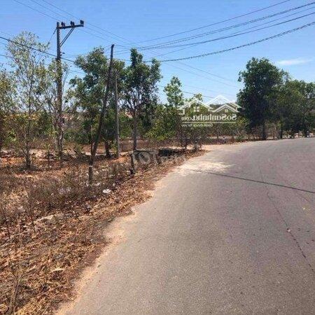 Đất Sân Bay Phan Thiết 1000M2 Thổ Cư 400M2 Giá 2Tỷ- Ảnh 4