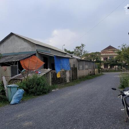 Bán đất chính chủ, vị trí trung tâm thị trấn ái tử- Ảnh 3