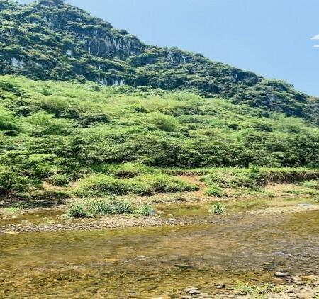 bán đất Kim Bôi Hòa Bình dt 2000m bám suối view thoáng đẹp đường rộng giá rẻ chỉ 850tr- Ảnh 1
