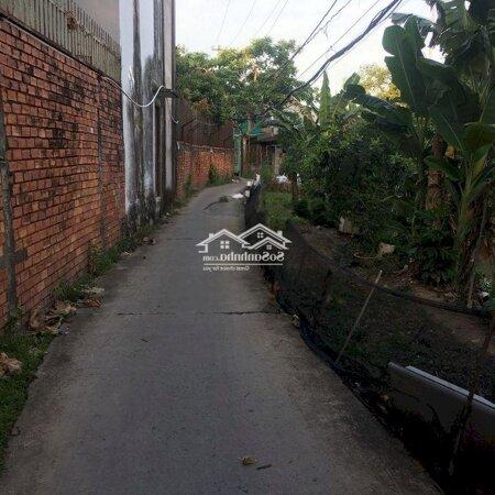 Bán Nền Hẻm 8 Nguyễn Chí Thanh Trà Nóc- Ảnh 2