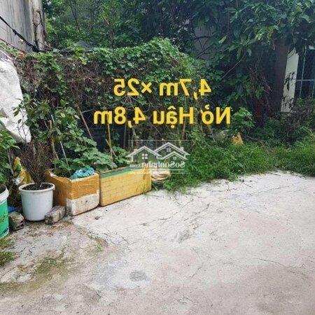 Bán Đất 1/409 Ấp 3 Phước Vĩnh An