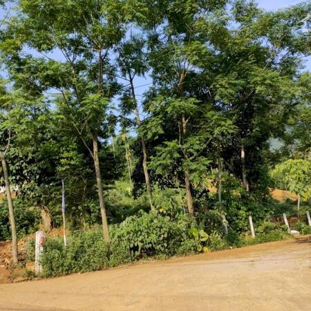 Những lô đất đẹp nhất tại khu vực Ba Vì tìm nhà đầu tư- Ảnh 3