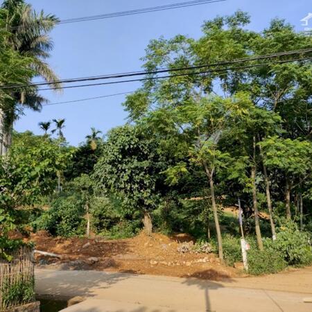 Những lô đất đẹp nhất tại khu vực Ba Vì tìm nhà đầu tư- Ảnh 4