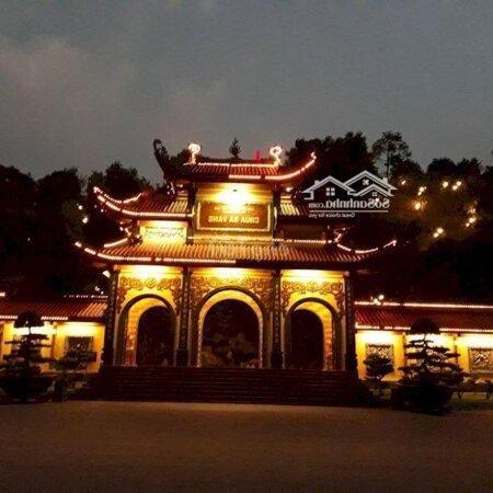 Can Cho Thue Lai Can Ho Chung Cu 43 M2- Ảnh 3
