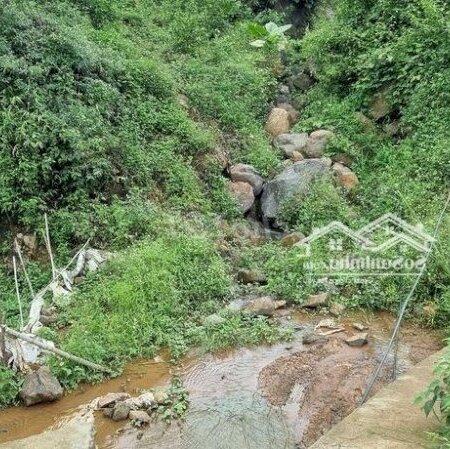 Bán Đất Trang Trại Cao Phong Giá Vài Trăm Triệu- Ảnh 6