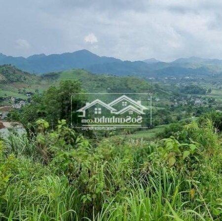 Bán Đất Trang Trại Cao Phong Giá Vài Trăm Triệu- Ảnh 4