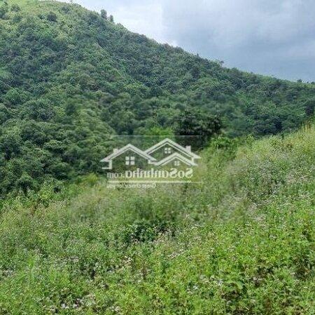 Bán Đất Trang Trại Cao Phong Giá Vài Trăm Triệu- Ảnh 3