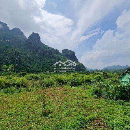 Đất Huyện Kim Bôi 688M² Bám Suối 30M,Mặt Tiền11M- Ảnh 2