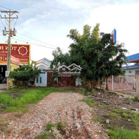 Nhà Sân Vườn Mặt Tiền Đường Võ Văn Kiệt- Ảnh 8