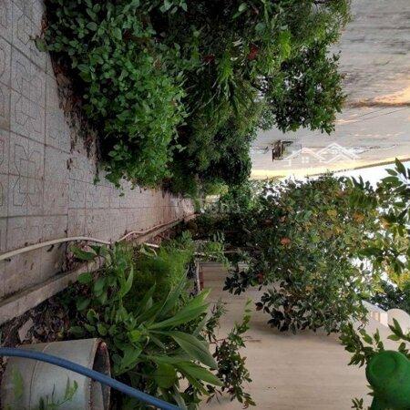 Nhà Sân Vườn Mặt Tiền Đường Võ Văn Kiệt- Ảnh 10