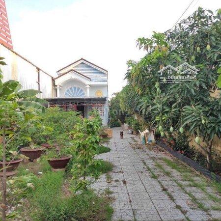 Nhà Sân Vườn Mặt Tiền Đường Võ Văn Kiệt- Ảnh 9