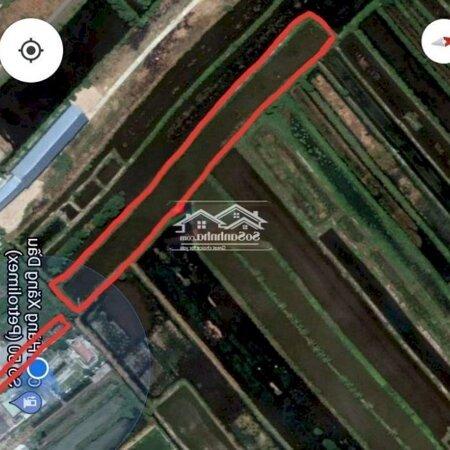 Nhà Sân Vườn Mặt Tiền Đường Võ Văn Kiệt- Ảnh 7