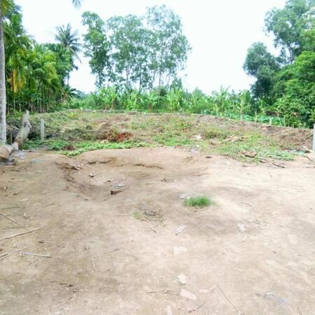 Đất 1040m2 có 200 thổ cư mặt tiền Nguyễn Chí Thanh- Ảnh 2