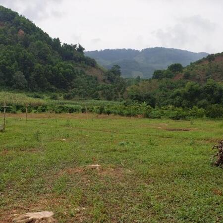 Bán đất Cao Phong Hòa Bình DT 10.2ha Full thổ cư.- Ảnh 1