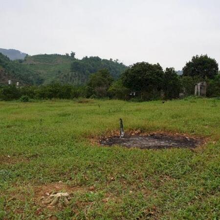 Bán đất Cao Phong Hòa Bình DT 10.2ha Full thổ cư.- Ảnh 3