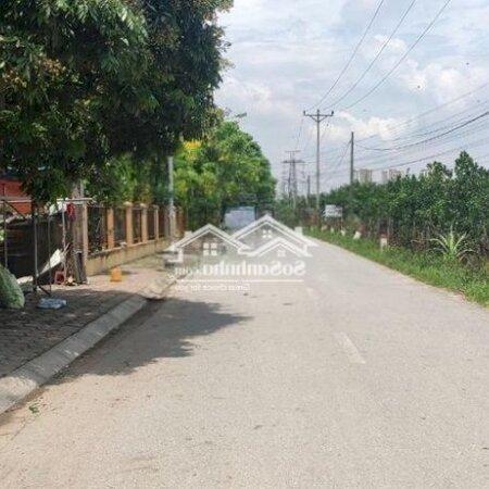 Đất Sổ Đỏ 140M2 (6.88X21) Giang Biên, Long Biên- Ảnh 3