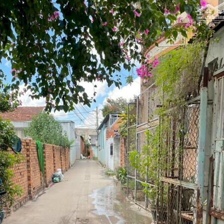 Bán căn nhà cấp 4 vị trí siêu đẹp ngay Phường An Hòa - Tp Biên Hòa giá cực rẻ- Ảnh 3