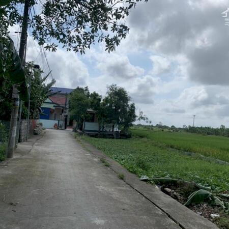 Bán đất thôn Đồng Quán Xã Hoa Động, Thuỷ Nguyên,Hải Phòng- Ảnh 5