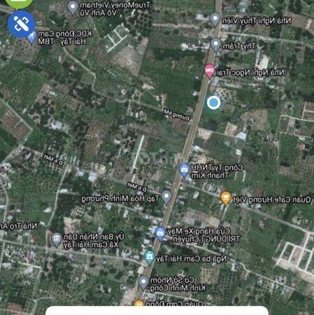 Bán Đất Quốc Lộ 1A - Tt Cam Lâm -Sổ Đỏ - Giá F0- Ảnh 5