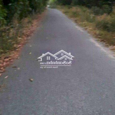 Đất Long An_Long Thành Cửa Ngõ Sân Bay Ltdiện Tích8594M- Ảnh 4
