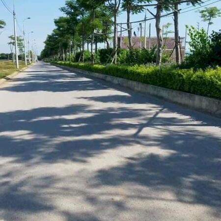 Mặt bằng khu đô thị Sao Mai - Triệu Sơn - Thanh Hoá  giá chủ đầu tư- Ảnh 4
