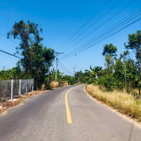 Chính Chủ Bán Lô Đất Măt Tiền Giá Rẻ Vị Trí Đẹp Xã Phú Thịnh Huyện Tân Phú Đồng Nai 1OOOm2- Ảnh 3