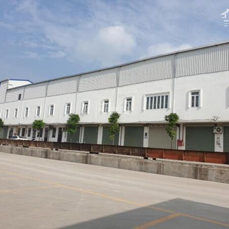 ĐÔng Anh Kim Nỗ , Đường 5 1000-6000m2 Diện Tích Cho Thuê LH 0857605756- Ảnh 2