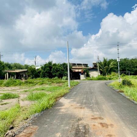 Mua đất Tân Quan - Giá mềm so với mặt chung khu vực Hớn Quản- Ảnh 4