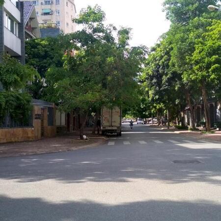 Bán Biệt thự khu đô thị mới Dịch Vọng, Cầu Giấy 300m2 chỉ 62tỷ- Ảnh 1