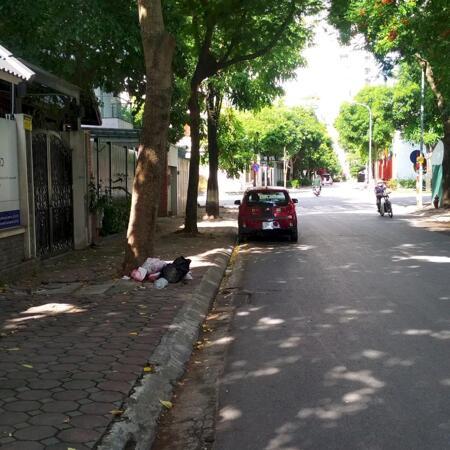 Bán Biệt thự khu đô thị mới Dịch Vọng, Cầu Giấy 300m2 chỉ 62tỷ- Ảnh 3