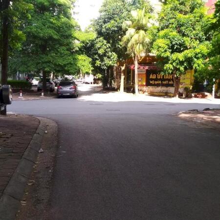 Bán Biệt thự khu đô thị mới Dịch Vọng, Cầu Giấy 300m2 chỉ 62tỷ- Ảnh 6