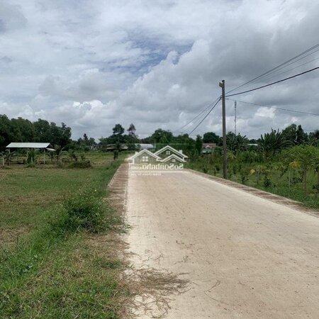 Sốc! Đất Cln Cách Ql1A 200M, Bình Thuận - 349K/M2.- Ảnh 2