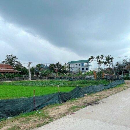 Bán Đất Chính Chủ 127,5M Kqh Tây Trì Nhơn- Ảnh 3