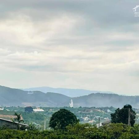 Combo nhà gỗ vườn rau đất ven Đà Lạt chỉ 1tỷ200tr rẻ nhất khu vực- Ảnh 6
