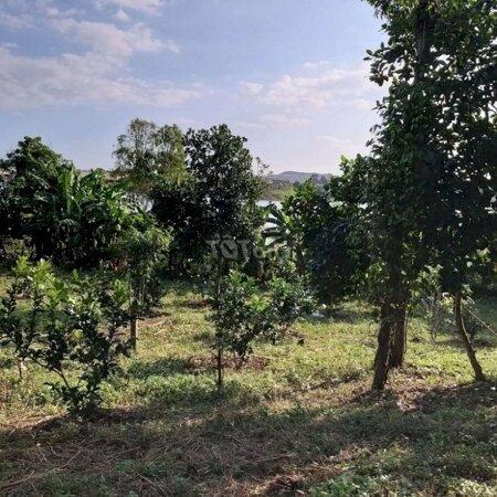 Đất Nghỉ Dưỡng View Hồ Suối Rao- Ảnh 5