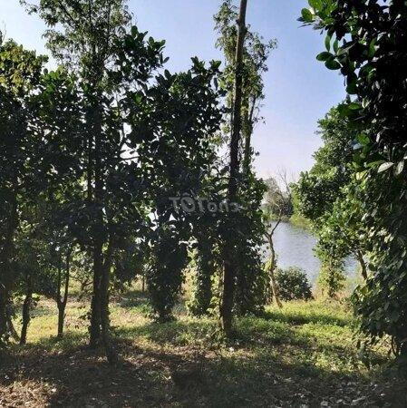 Đất Nghỉ Dưỡng View Hồ Suối Rao- Ảnh 3