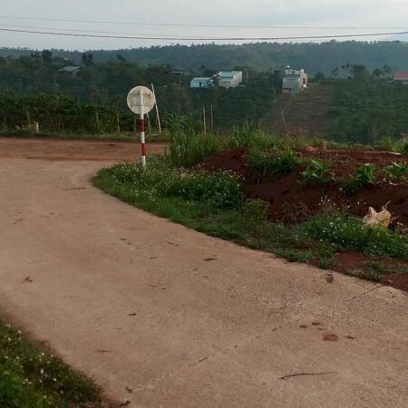 BÁN đất nông nghiệp 4ha- Ảnh 10